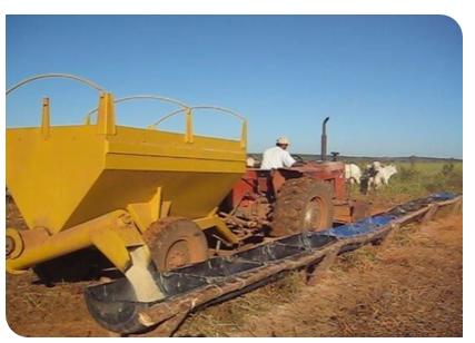 Engorda intensiva a pasto nas aguas e seca
